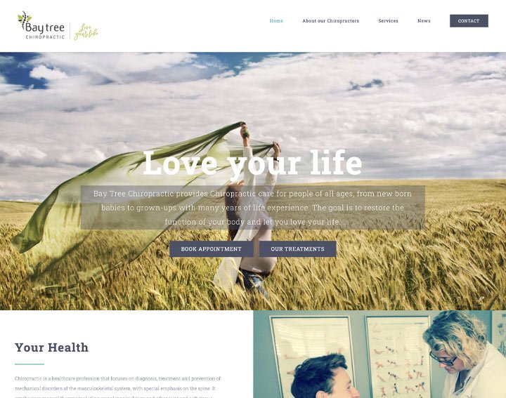 Baytree Chiro - A Website by SEO Hampshire