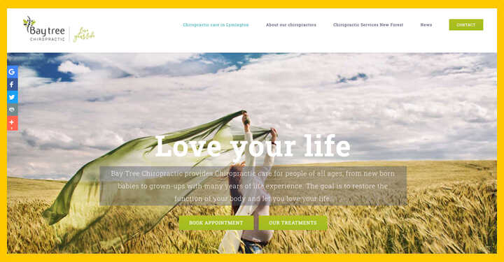 Local SEO WordPress Design Hosting For Lymington New Forest Chiropractor.j