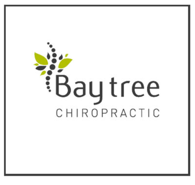 Local SEO WordPress Design Hosting For New forest Chiropractor - SEO Hampshire