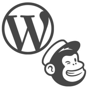 Wordpress Website Design With Mail Chimp Integration - SEO Hampshire